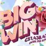 €51,438 in Winnings in a Fabulous Debut on BitStarz
